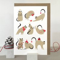 Angels And Elves Cat Christmas Card And Wrapping Paper