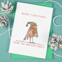 Personalised Rainbow Robin Christmas Cards
