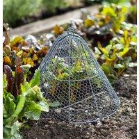 Garden Metal Cloche