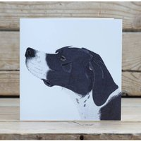English Pointer Dog Card