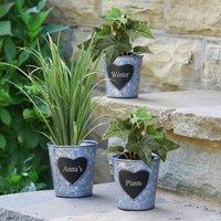 Set Of Three Personalised Heart Bucket Planters