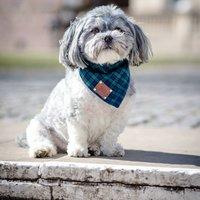 Smithfield Luxury Dog Bandana Neckerchief