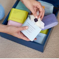 Mineral Infusion Tea Chest Collection