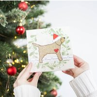 Pack Of Cockapoo Christmas Cards