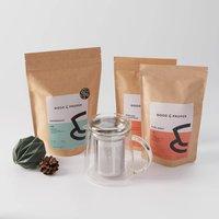 Glass Teapot Bundle