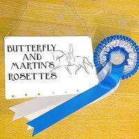 Personalisd Rosette Holder For Dressage Horses