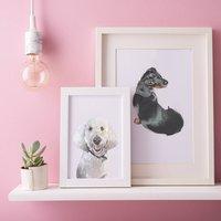 Personalised Illustrated Pet Portrait