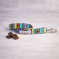 Multi Colour Dog Lead For Girl Or Boy Dogs
