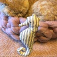 Catnip Seahorse Cat Toys