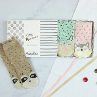 Woodland Raccoon And Friends Box Of Socks