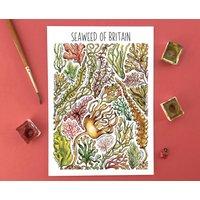 Seaweed Of Britain Watercolour Postcard