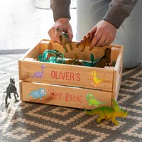 Personalised Dinosaur Toy Box Crate