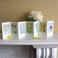 Wedding Concertina Card And Decoration