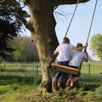 Personalised Large Oak And Rope Swing