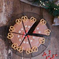 Rudolph Cake Baking Kit