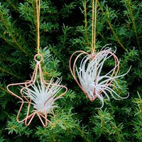 Copper Wire Heart Or Star Hanging Air Plant Decoration