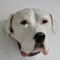 Wall Mounted Pet Head Sculpture