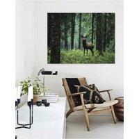 Elk In The Woods, Canvas Art