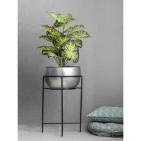 Stylish Silver Plant Holder On Stand Mira