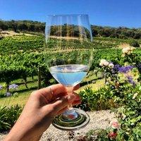 Six Bottles Organic White Wine Selection