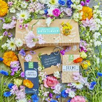 New Baby Flower Seed Gift Box