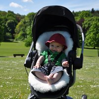Baa Baby British Lambskin Liner White