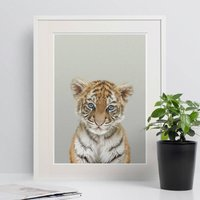 Baby's Room Peekaboo Tiger Cub Animal Print