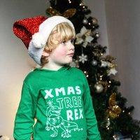 Tree Rex Dinosaur Kids Christmas T Shirt/ Hoodie