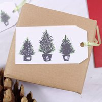 Trio Of Christmas Trees Gift Tag