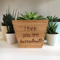 'I Think You're Succulent!' Bamboo Plant Pot