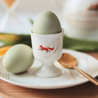 Quinn The Fox 'Storm Surge' Egg Cup