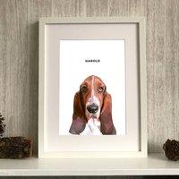 Personalised Dog Portrait Colour Illustration