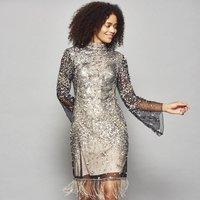 Idele Embellished Dress With Flared Sleeve