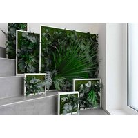 Plant Island Wall Frame Three Pack