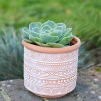 Geometric Print Terracotta Planter With Choice Of Plant