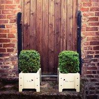 I Do… Me Too Metal Wedding Planters, White/Aubergine/English Green