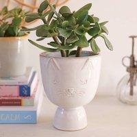 Speckled Ceramic Cat Planter