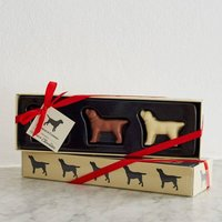Labrador Chocolates