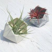 Geometric Tilted Icosahedron Ceramic Pot