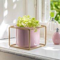 Pink Metal Planter In Gold Frame
