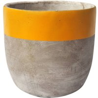 Large Concrete Yellow Plant Pot