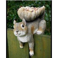 Squirrel Bird Feeder Bird Table
