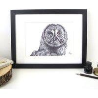 Great Grey Owl Pen And Ink Illustration Framed Print