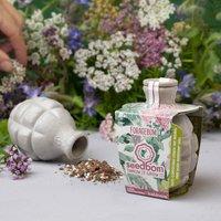 Foragebom Seedbom Edible Wild Herbs