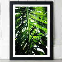Green Leaf Two By Mareike Boehmer In Black Frame A2