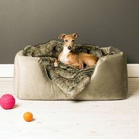 Charley Chau Deep Sided Dog Bed In Velour, Lime/Tangerine/Claret