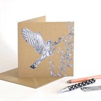 American Kestrel Recycled Greetings Card