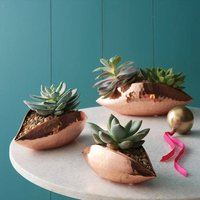 Copper Seedpod Planters
