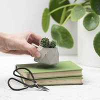 Small Geo Concrete Plant Pot