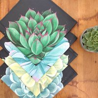 Succulent Napkin Gift Set